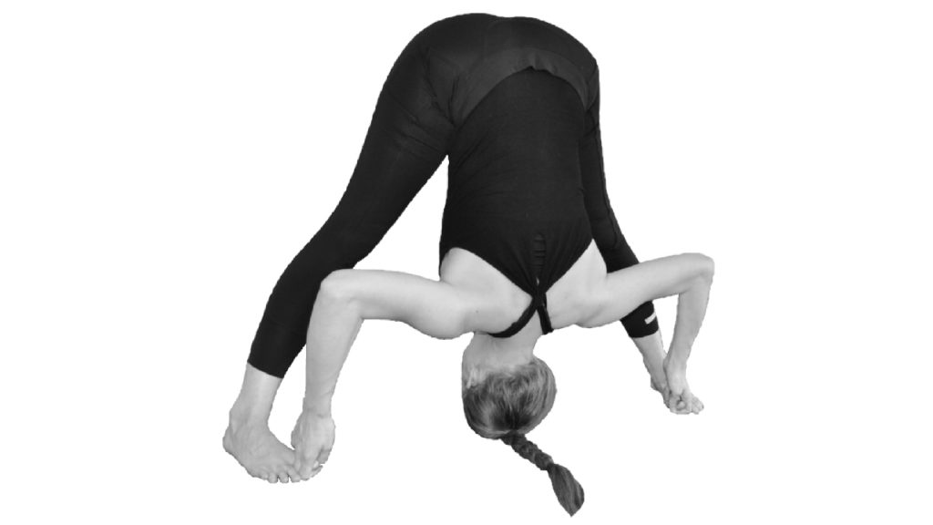 prasarita padottanasana d yogahouding spreidstand