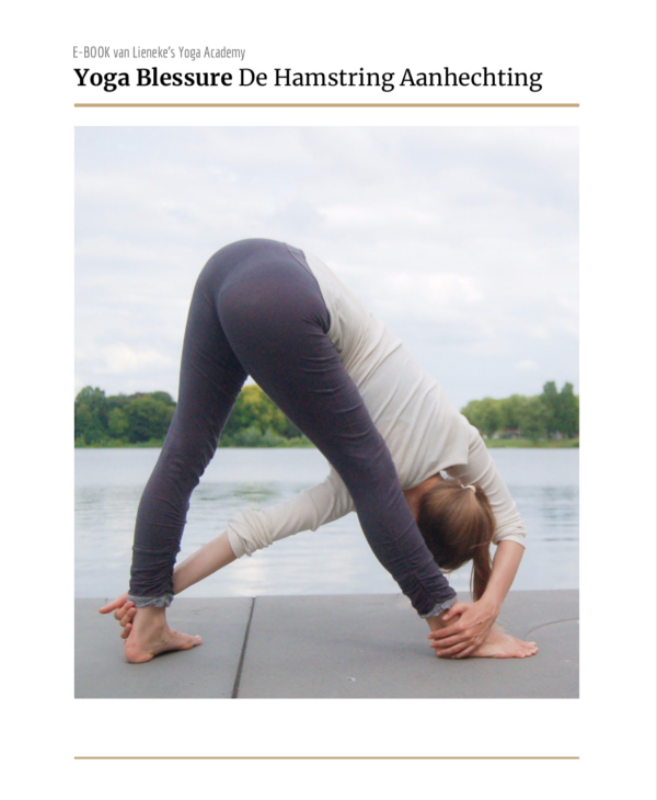 e-book yoga blessure hamstring aanhechting