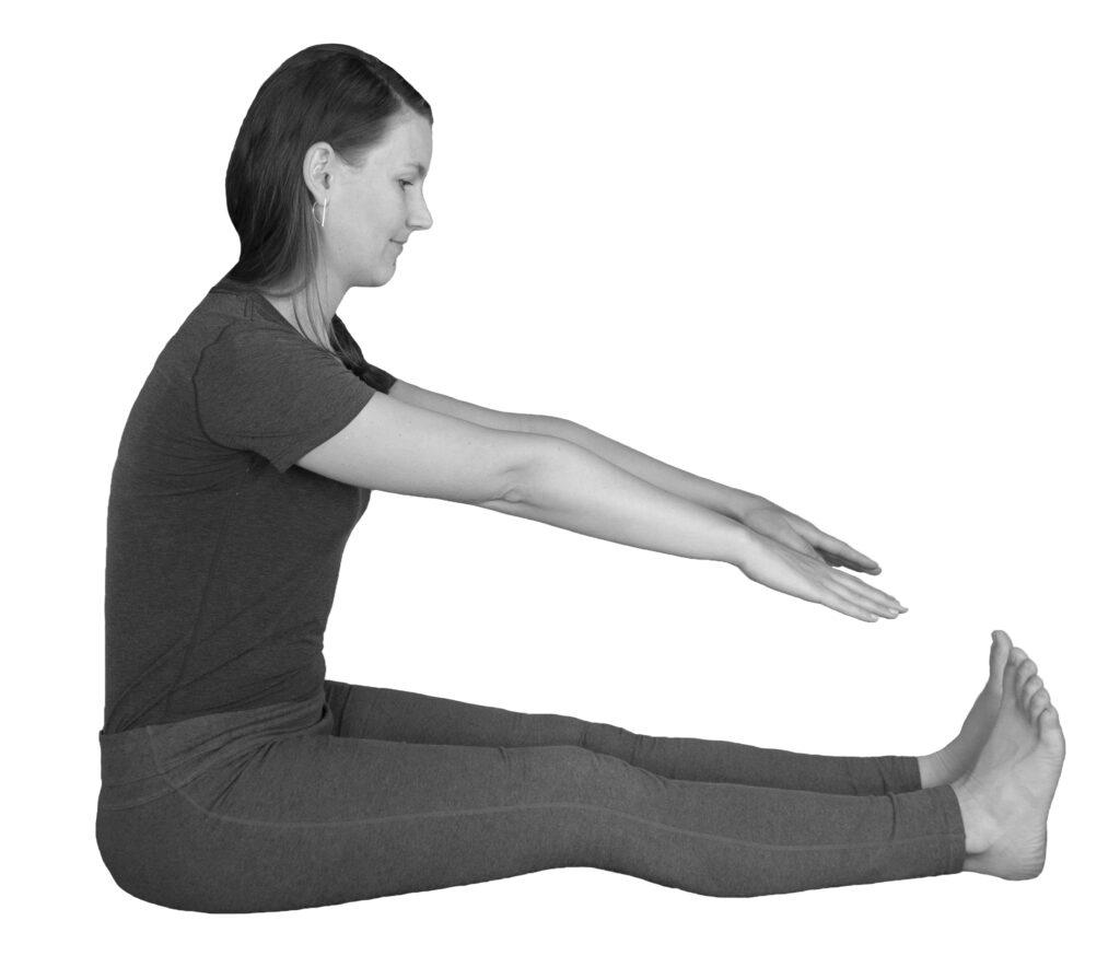 yoga anatomie vooroverbuigen