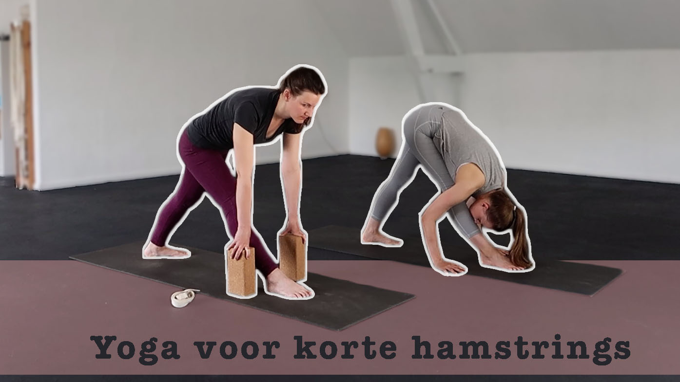 yogales korte hamstrings