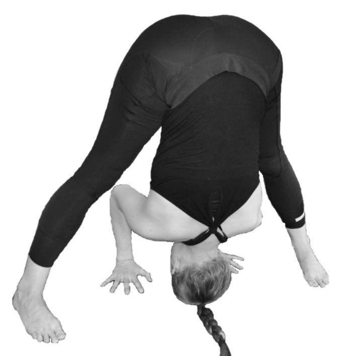 yogahouding spreidstand