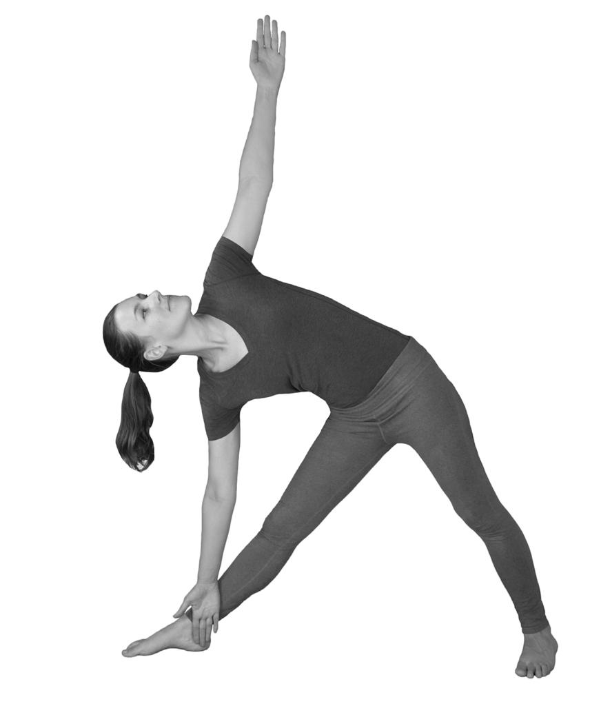 alignment trikonasana hatha yoga