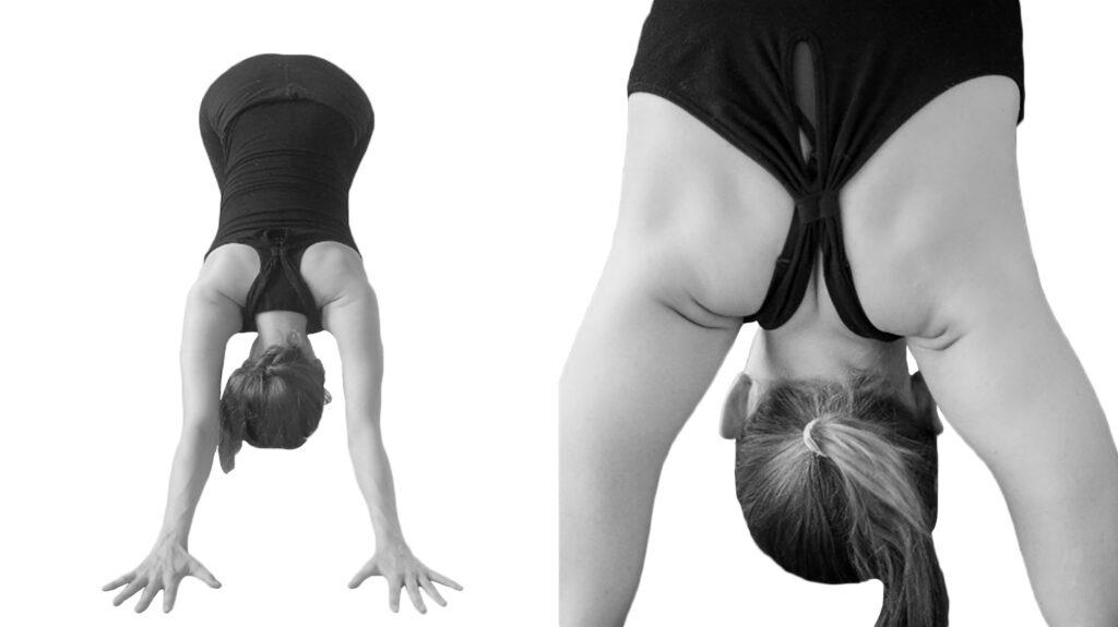 yoga hoe doe je de hondhouding